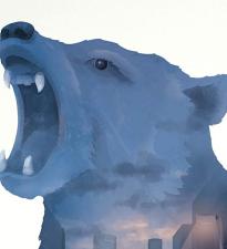 Обри Плаза и Сара Гадон снимутся в психологическом триллере «Черный Медведь»