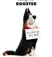 Харрисон Форд становится собакой по кличке Петух в новом трейлере «Тайной жизни домашних животных 2»