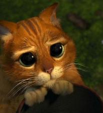 Режиссер анимационного «Человека-паука» будет снимать нового «Кота в сапогах»