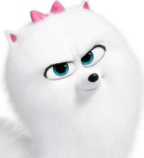 Новый трейлер о персонажах для фильма «Тайная жизнь домашних животных 2» расскажет о школе кошек